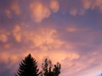 Buffalo-Sunset-2.jpg